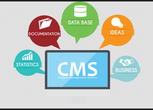 best customer support management company in pune
